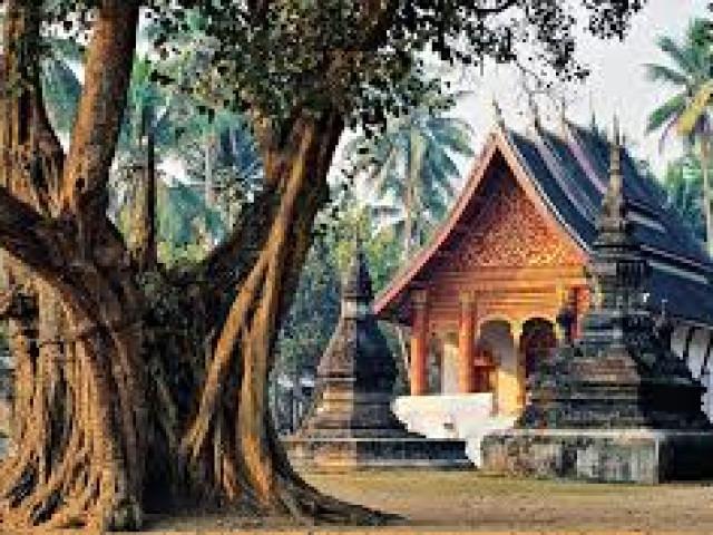 Avventura Cambogia