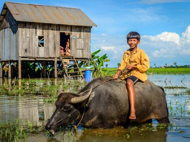 Cambogia Experience dal Vietnam a Bangkok