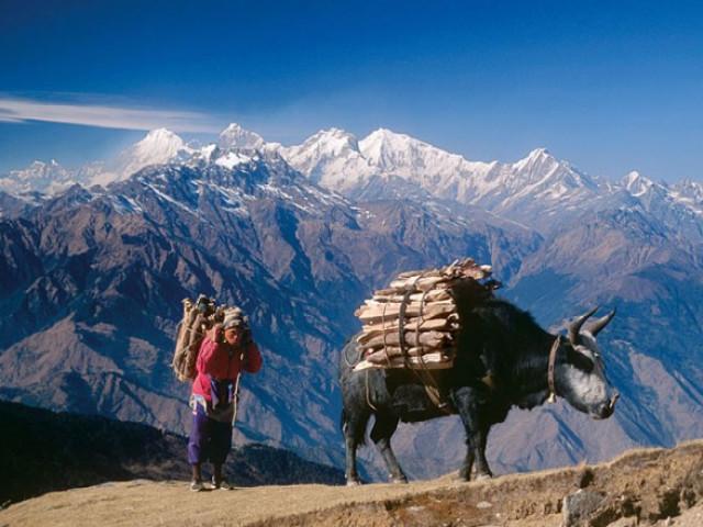 NEPAL: NEPAL TOUR E TREKKING LANGTANG