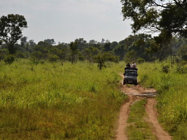 Explore Ceylon