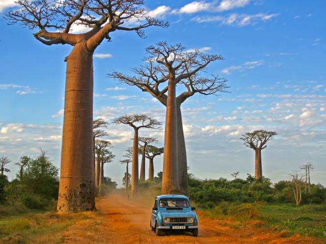 EXPLORE MADAGASCAR 10 GIUGNO 2020