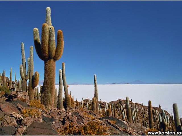 ARGENTINA E PATAGONIA: TOUR CILE E BOLIVIA EXPLORE