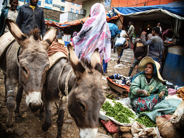 Tour Etiopia Explore  26 Dicembre 2020