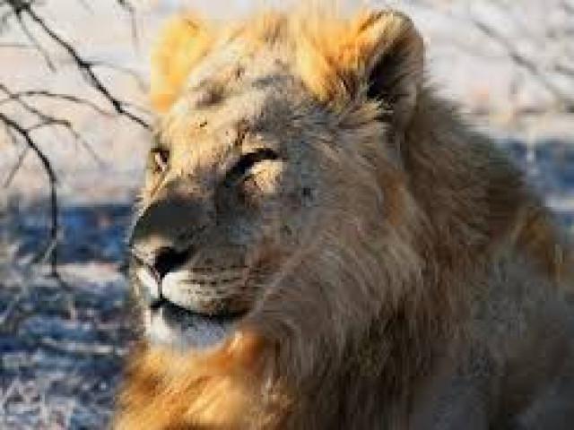 NAMIBIA: TOUR NAMIBIA EXPLORE  05 SETTEMBRE