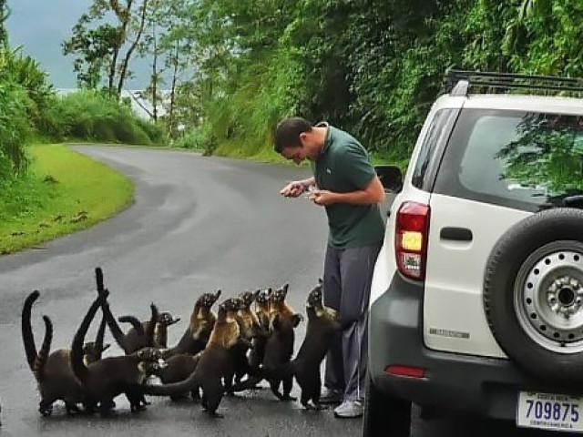 COSTA RICA: TOUR WONDER COSTARICA MAGGIO