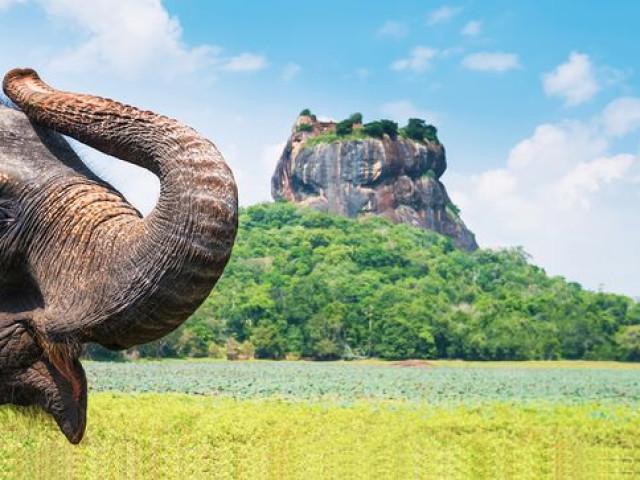 SRI LANKA: Tour Ceylon Classico Ottobre